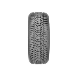 215/50R17 95V ESKIMO HP2 XL MS SAVA