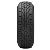 195/65R15 91H TL WINTER TG